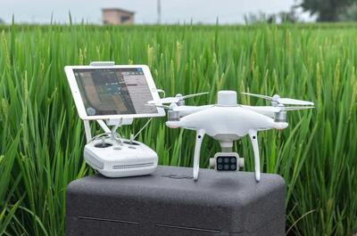 DJI P4 Multispectral Dron pro stanovení indexů NDRE a NDVI - 2