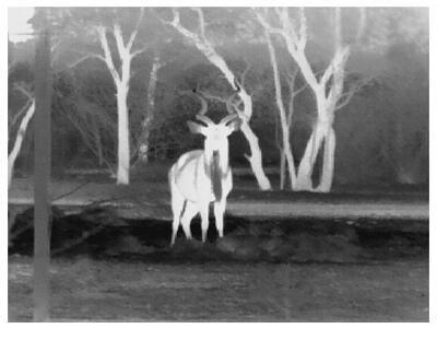 Termokamera FLIR BHS-X Command pro noční vidění - 4